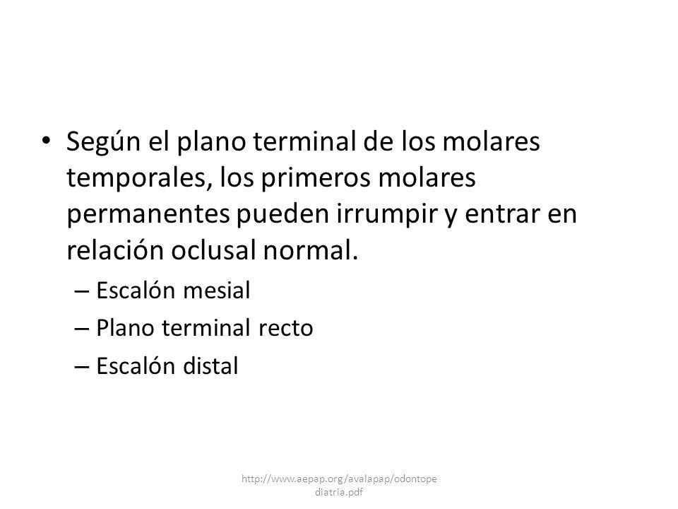 Según el plano terminal de los molares temporales, los primeros molares permanentes pueden irrumpir y entrar en relación oclusal normal. – Escalón mes