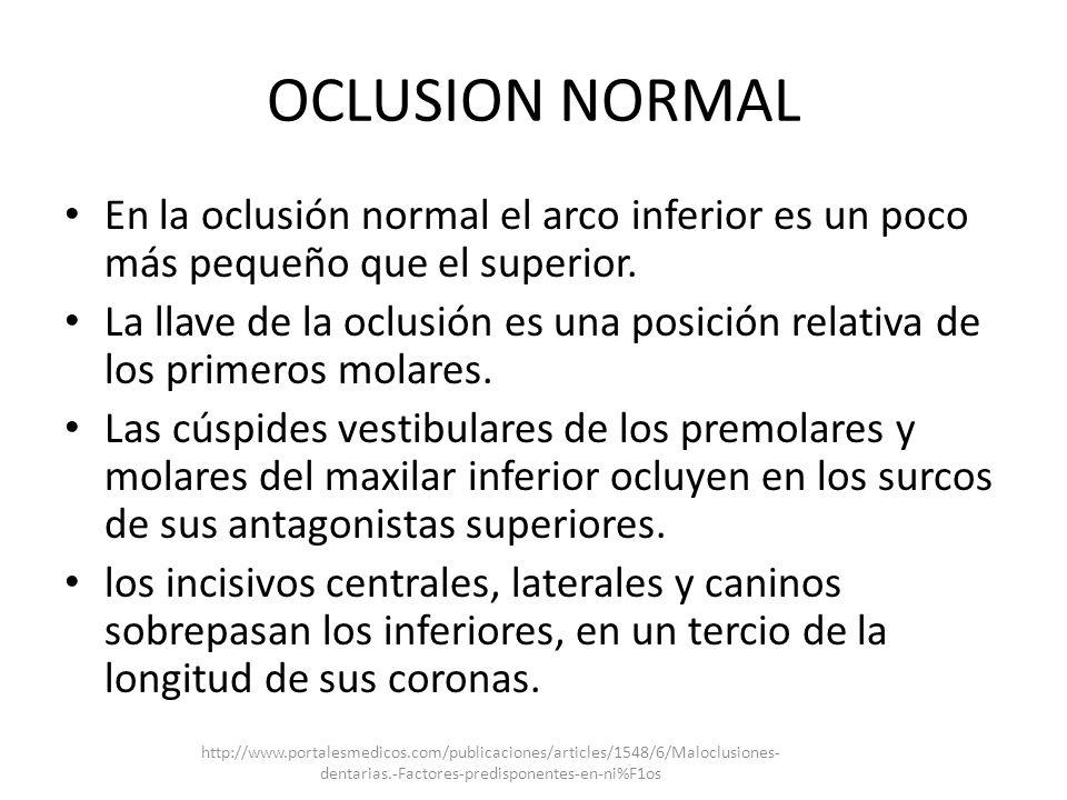 OCLUSION NORMAL En la oclusión normal el arco inferior es un poco más pequeño que el superior. La llave de la oclusión es una posición relativa de los