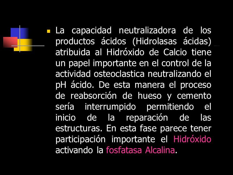 La capacidad neutralizadora de los productos ácidos (Hidrolasas ácidas) atribuida al Hidróxido de Calcio tiene un papel importante en el control de la
