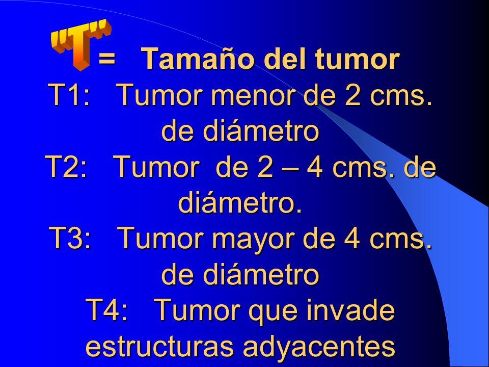 = Tamaño del tumor T1: Tumor menor de 2 cms. de diámetro T2: Tumor de 2 – 4 cms. de diámetro. T3: Tumor mayor de 4 cms. de diámetro T4: Tumor que inva