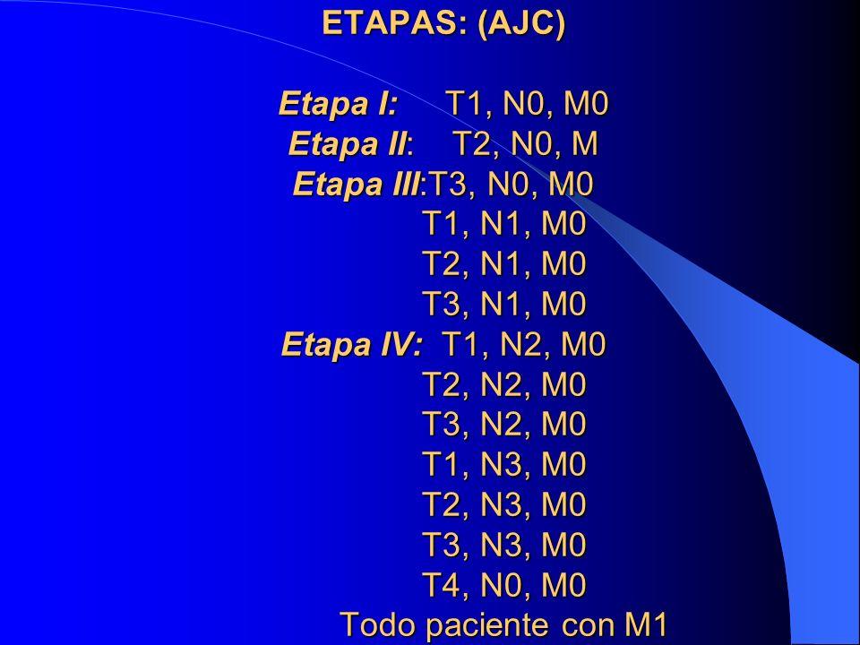 ETAPAS: (AJC) Etapa I: T1, N0, M0 Etapa II: T2, N0, M Etapa III:T3, N0, M0 T1, N1, M0 T2, N1, M0 T3, N1, M0 Etapa IV: T1, N2, M0 T2, N2, M0 T3, N2, M0