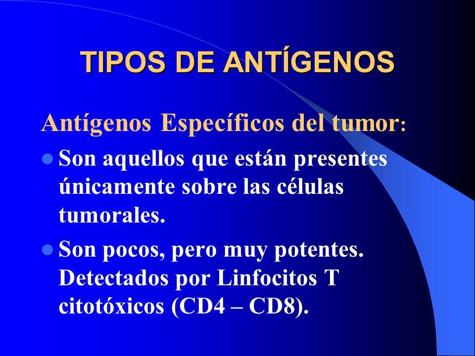 TIPOS DE ANTÍGENOS Antígenos Específicos del tumor : Son aquellos que están presentes únicamente sobre las células tumorales. Son pocos, pero muy pote