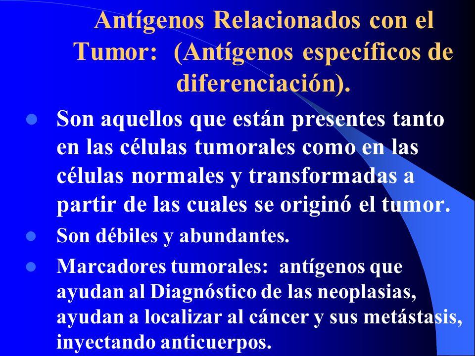 Antígenos Relacionados con el Tumor: (Antígenos específicos de diferenciación). Son aquellos que están presentes tanto en las células tumorales como e