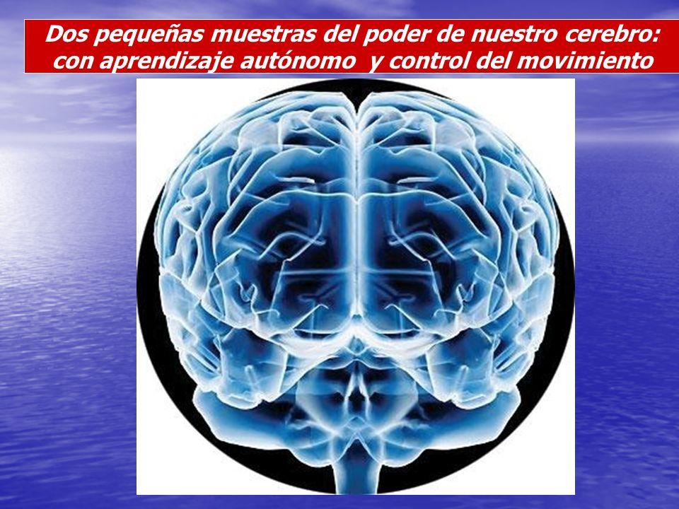 Dos pequeñas muestras del poder de nuestro cerebro: con aprendizaje autónomo y control del movimiento