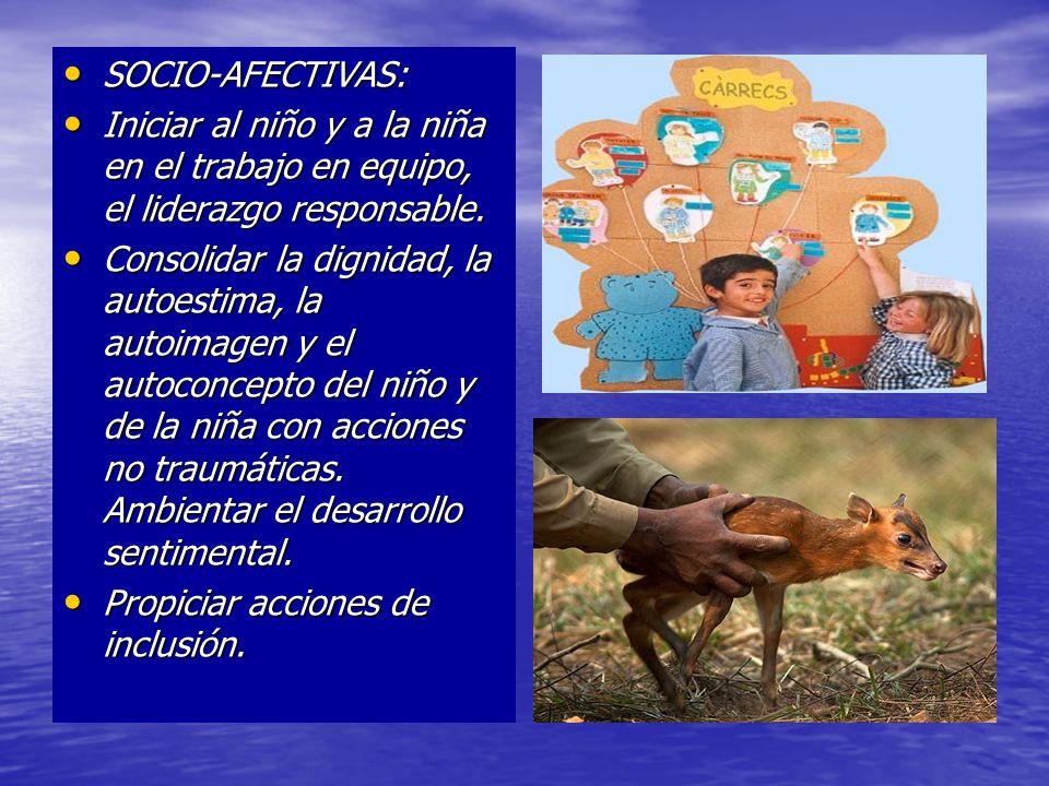 SOCIO-AFECTIVAS: SOCIO-AFECTIVAS: Iniciar al niño y a la niña en el trabajo en equipo, el liderazgo responsable. Iniciar al niño y a la niña en el tra