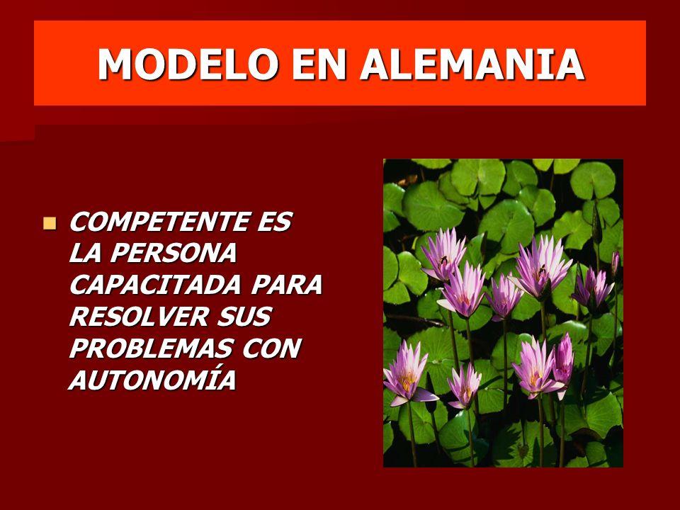 MODELO EN ALEMANIA COMPETENTE ES LA PERSONA CAPACITADA PARA RESOLVER SUS PROBLEMAS CON AUTONOMÍA COMPETENTE ES LA PERSONA CAPACITADA PARA RESOLVER SUS