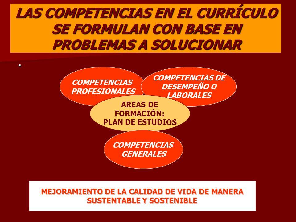 LAS COMPETENCIAS EN EL CURRÍCULO SE FORMULAN CON BASE EN PROBLEMAS A SOLUCIONAR. COMPETENCIAS PROFESIONALES COMPETENCIAS DE DESEMPEÑO O LABORALES AREA