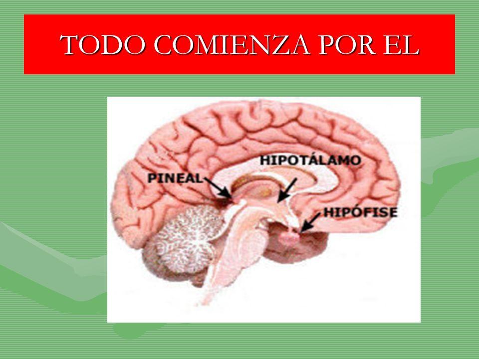 TODO COMIENZA POR EL