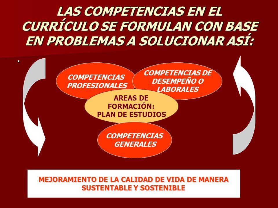 LAS COMPETENCIAS EN EL CURRÍCULO SE FORMULAN CON BASE EN PROBLEMAS A SOLUCIONAR ASÍ:.