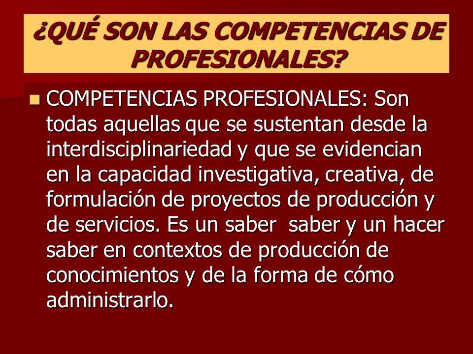 ¿QUÉ SON LAS COMPETENCIAS DE PROFESIONALES.