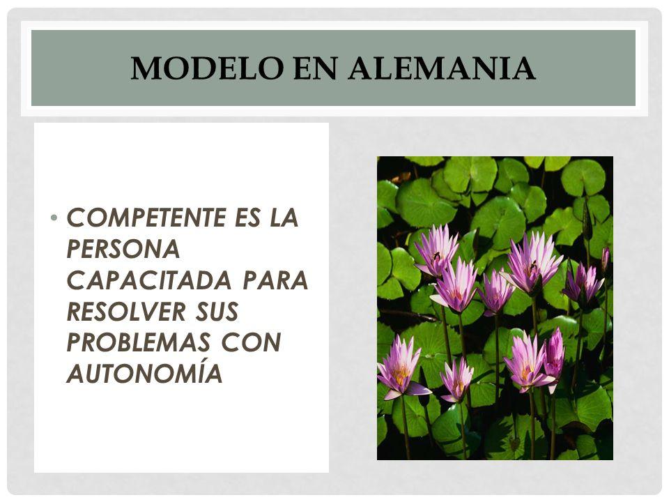 MODELO EN ALEMANIA COMPETENTE ES LA PERSONA CAPACITADA PARA RESOLVER SUS PROBLEMAS CON AUTONOMÍA