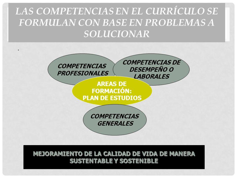 LAS COMPETENCIAS EN EL CURRÍCULO SE FORMULAN CON BASE EN PROBLEMAS A SOLUCIONAR.