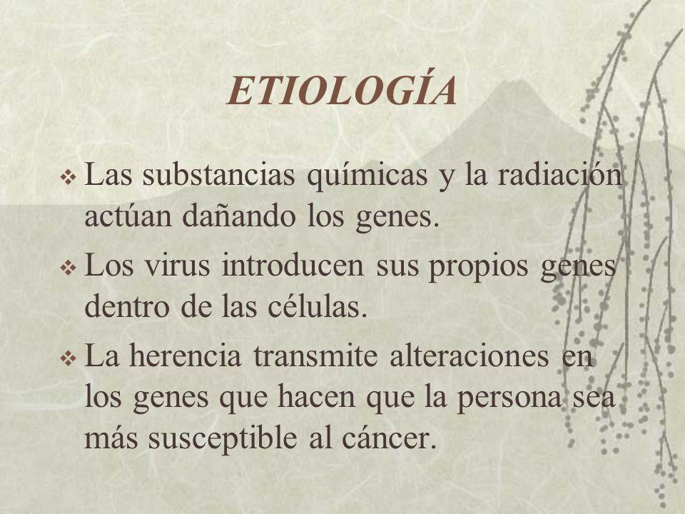 ETIOLOGÍA Las substancias químicas y la radiación actúan dañando los genes. Los virus introducen sus propios genes dentro de las células. La herencia