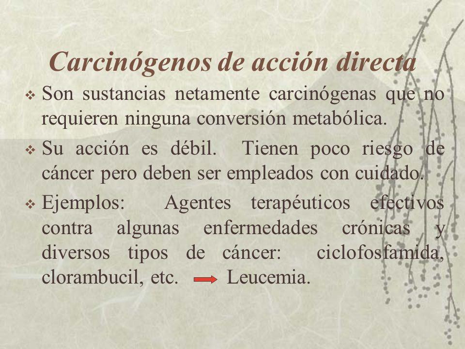 Carcinógenos de acción directa Son sustancias netamente carcinógenas que no requieren ninguna conversión metabólica. Su acción es débil. Tienen poco r