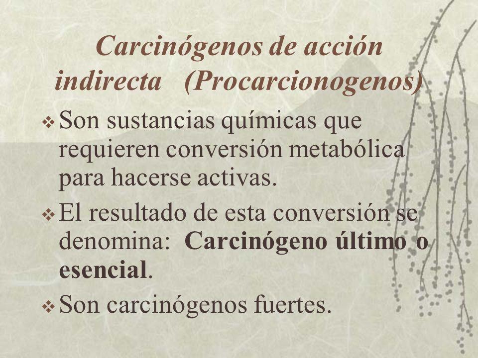 Carcinógenos de acción indirecta (Procarcionogenos) Son sustancias químicas que requieren conversión metabólica para hacerse activas. El resultado de