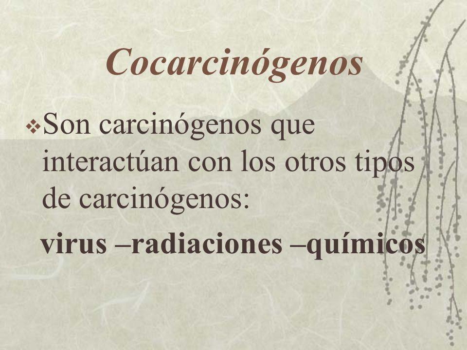 Cocarcinógenos Son carcinógenos que interactúan con los otros tipos de carcinógenos: virus –radiaciones –químicos