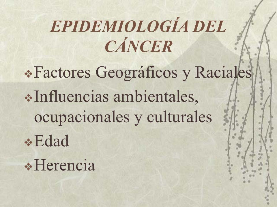 EPIDEMIOLOGÍA DEL CÁNCER Factores Geográficos y Raciales Influencias ambientales, ocupacionales y culturales Edad Herencia