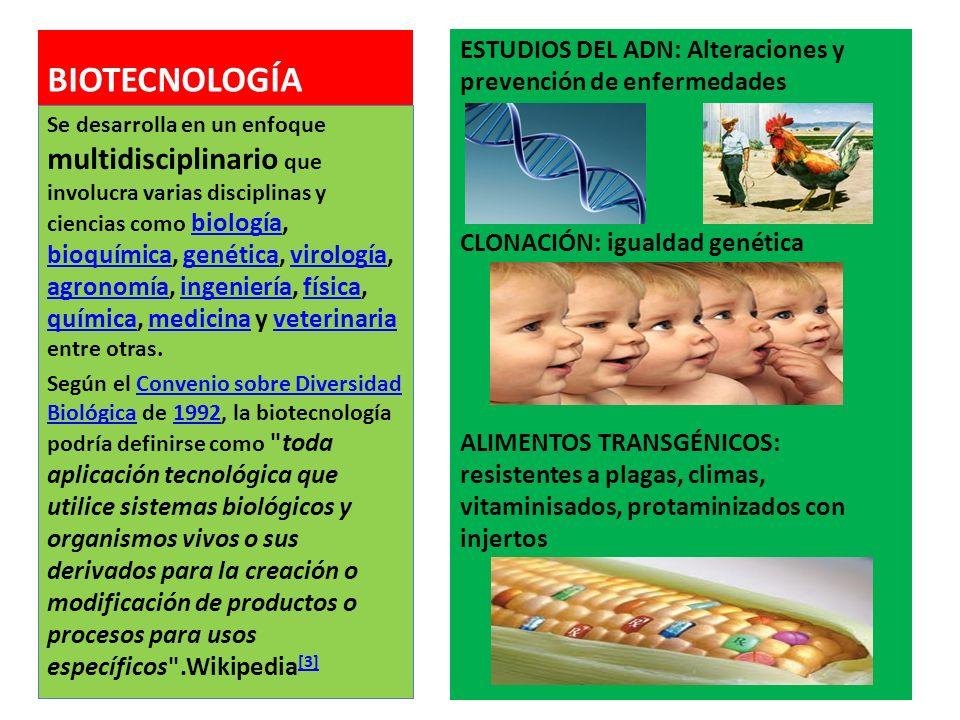 BIOÉTICA: estudio sistemático de la conducta moral (ética) en las ciencias de la vida ECOLOGIA. Sostenibilidad de los equilibrios energéticos. Leyes d