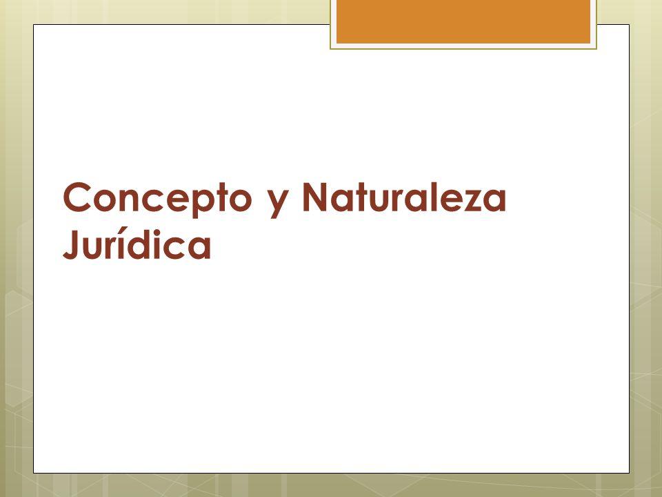 Concepto y Naturaleza Jurídica