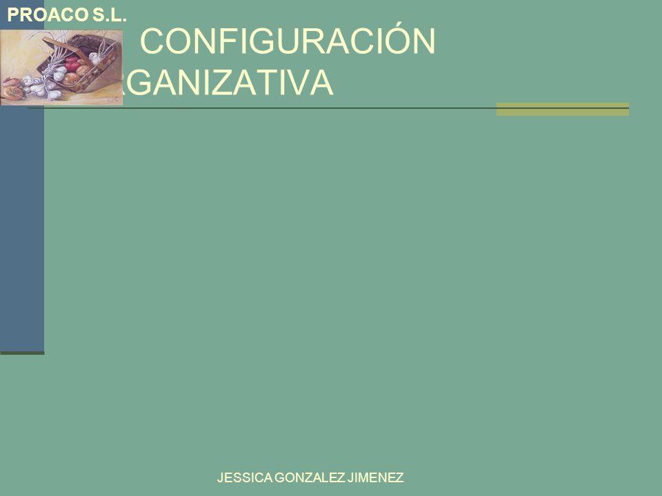 CONFIGURACIÓN ORGANIZATIVA JESSICA GONZALEZ JIMENEZ PROACO S.L.