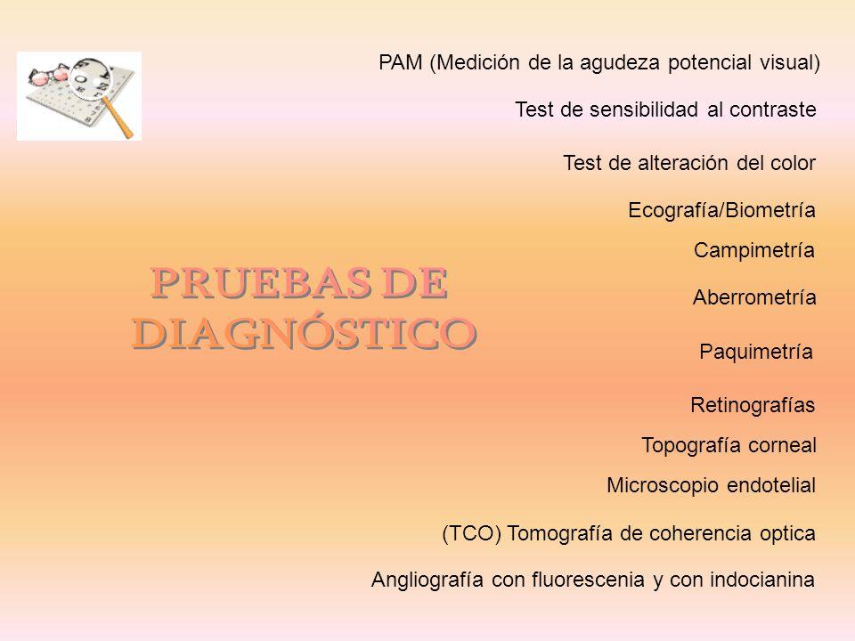 Campimetría Microscopio endotelial Topografía corneal Aberrometría Paquimetría Ecografía/Biometría Test de sensibilidad al contraste Test de alteració