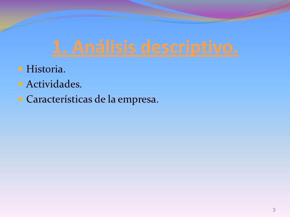 Historia. Actividades. Características de la empresa. 3 1. Análisis descriptivo.