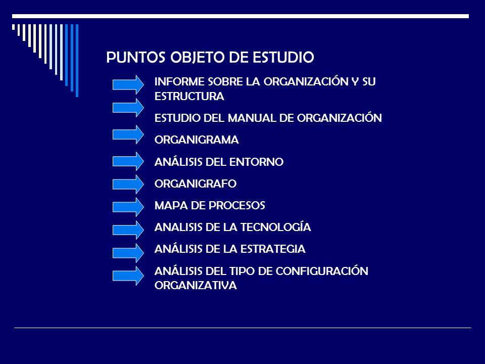 PUNTOS OBJETO DE ESTUDIO INFORME SOBRE LA ORGANIZACIÓN Y SU ESTRUCTURA ESTUDIO DEL MANUAL DE ORGANIZACIÓN ORGANIGRAMA ANÁLISIS DEL ENTORNO ORGANIGRAFO