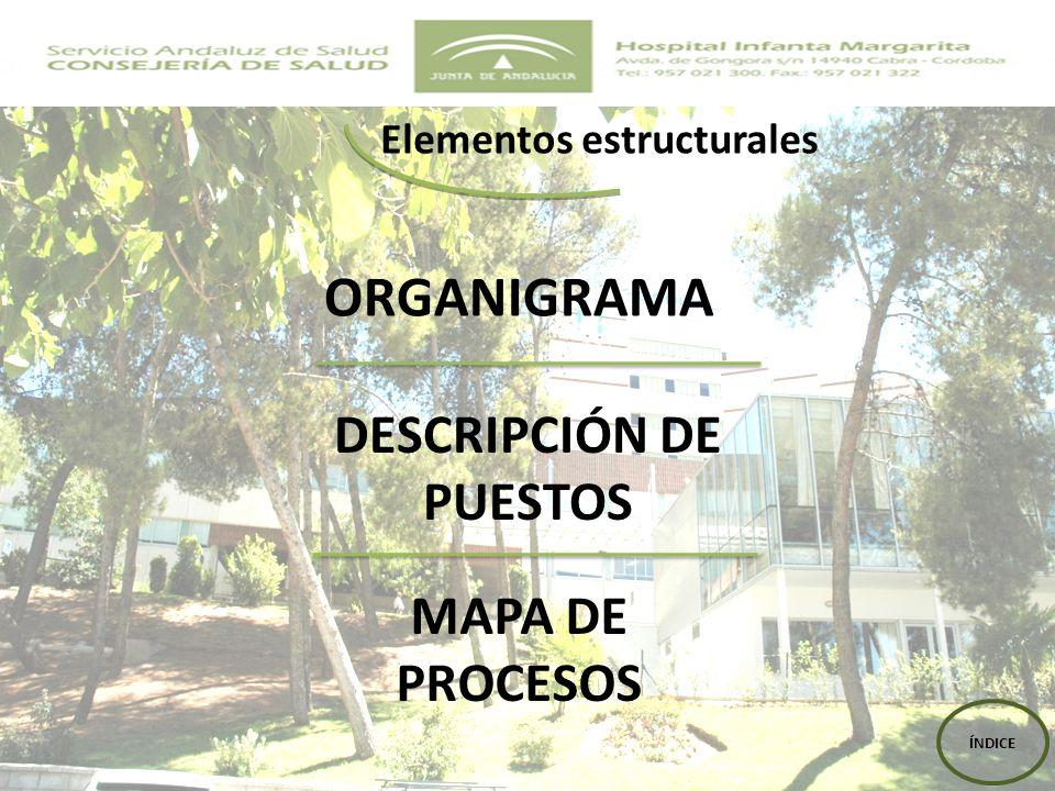 ORGANIGRAMA DESCRIPCIÓN DE PUESTOS MAPA DE PROCESOS Elementos estructurales ÍNDICE
