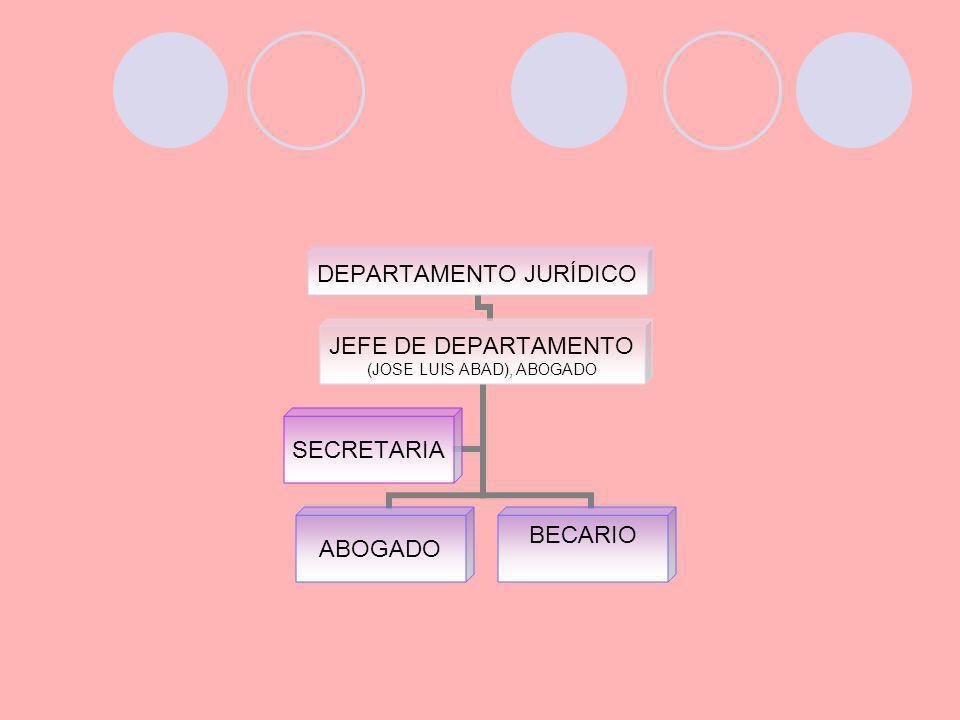 DEPARTAMENTO JURÍDICO JEFE DE DEPARTAMENTO (JOSE LUIS ABAD), ABOGADO ABOGADO BECARIO SECRETARIA