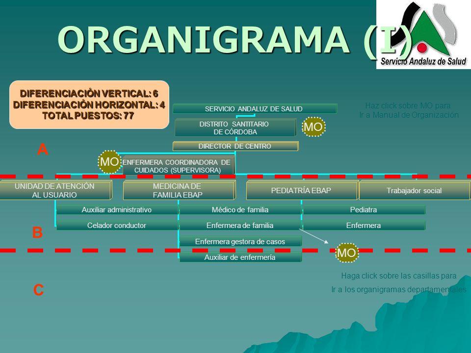 ORGANIGRAMA (I) SERVICIO ANDALUZ DE SALUD DISTRITO SANTITARIO DE CÓRDOBA DIRECTOR DE CENTRO ENFERMERA COORDINADORA DE CUIDADOS (SUPERVISORA) UNIDAD DE