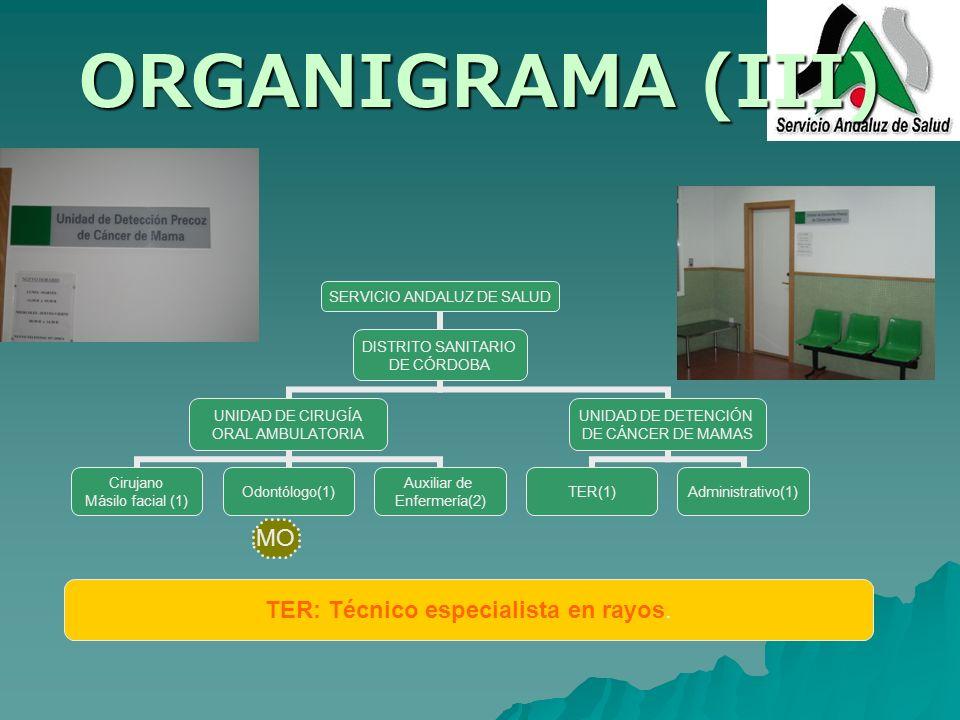 ORGANIGRAMA (III) SERVICIO ANDALUZ DE SALUD DISTRITO SANITARIO DE CÓRDOBA UNIDAD DE CIRUGÍA ORAL AMBULATORIA Cirujano Másilo facial (1) Odontólogo(1)