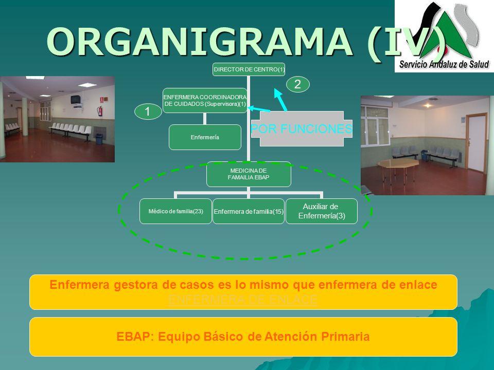 ORGANIGRAMA (IV) DIRECTOR DE CENTRO(1) MEDICINA DE FAMAILIA EBAP Médico de familia(23) Enfermera de familia(15) Auxiliar de Enfermería(3) ENFERMERA CO