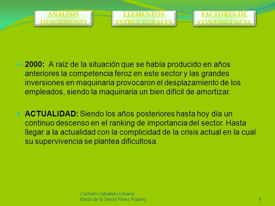 Carmen Caballero Urbano María de la Sierra Pérez Ropero14 ELEMENTOS ESTRUCTURALES ANÁLISIS DESCRIPTIVO ANÁLISIS DESCRIPTIVO ELEMENTOS ESTRUCTURALES ELEMENTOS ESTRUCTURALES FACTORES DE CONTINGENCIA FACTORES DE CONTINGENCIA