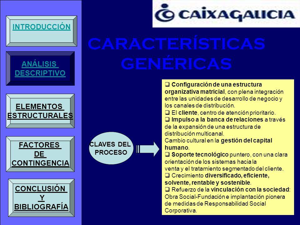 CARACTERÍSTICAS GENÉRICAS CLAVES DEL PROCESO Configuración de una estructura organizativa matricial, con plena integración entre las unidades de desar