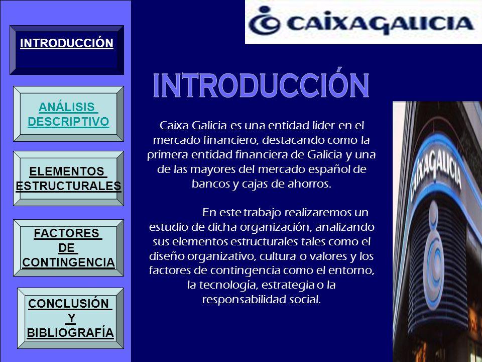 Caixa Galicia es una entidad líder en el mercado financiero, destacando como la primera entidad financiera de Galicia y una de las mayores del mercado