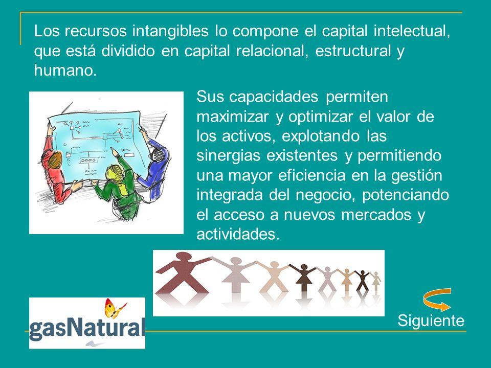 Los recursos intangibles lo compone el capital intelectual, que está dividido en capital relacional, estructural y humano.