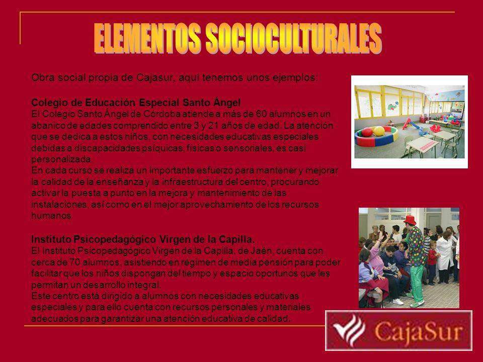 Obra social propia de Cajasur, aquí tenemos unos ejemplos: Colegio de Educación Especial Santo Ángel El Colegio Santo Ángel de Córdoba atiende a más d