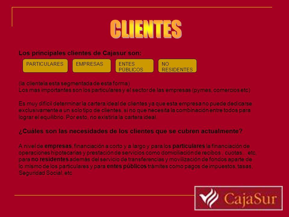 Los principales clientes de Cajasur son: (la clientela esta segmentada de esta forma) Los mas importantes son los particulares y el sector de las empr