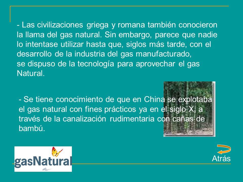 - Estados Unidos son los pioneros en la explotación del gas natural.