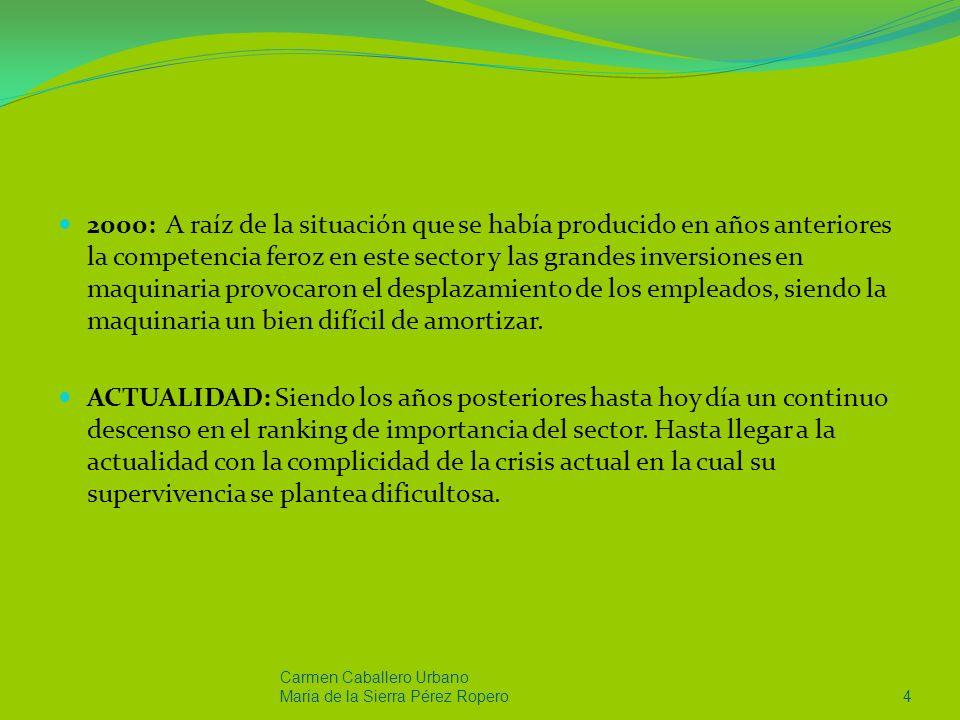 Carmen Caballero Urbano Maria de la Sierra Pérez Ropero45 En cuanto al patrón estratégico que la empresa presenta es el defensivo ya que la empresa trata de perfeccionar sus productos, además emplean una tecnología rutinarias.