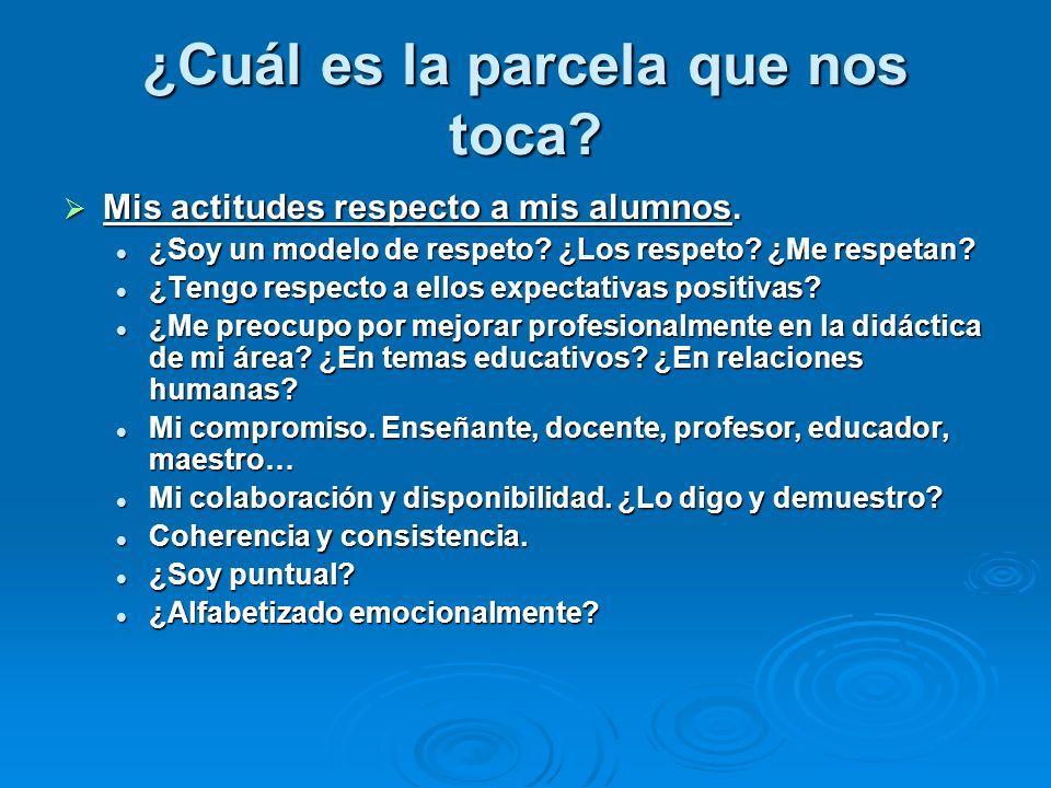 ¿Cuál es la parcela que nos toca? Mis actitudes respecto a mis alumnos. Mis actitudes respecto a mis alumnos. ¿Soy un modelo de respeto? ¿Los respeto?