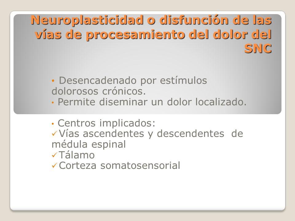 Neuroplasticidad o disfunción de las vías de procesamiento del dolor del SNC Desencadenado por estímulos dolorosos crónicos. Permite diseminar un dolo