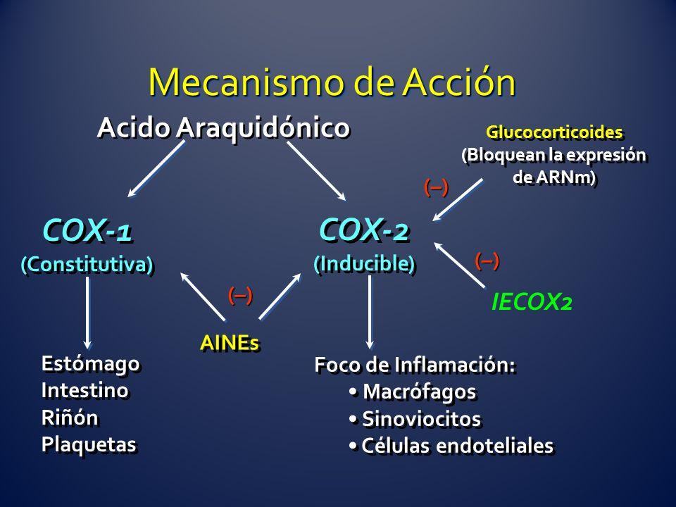 Glucocorticoides (Bloquean la expresión de ARNm) Glucocorticoides (Bloquean la expresión de ARNm) Acido Araquidónico COX-1 (Constitutiva) COX-1 (Const