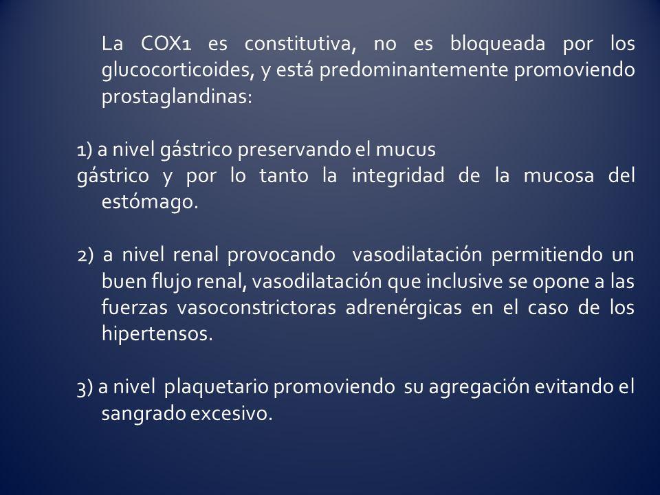 La COX1 es constitutiva, no es bloqueada por los glucocorticoides, y está predominantemente promoviendo prostaglandinas: 1) a nivel gástrico preservan