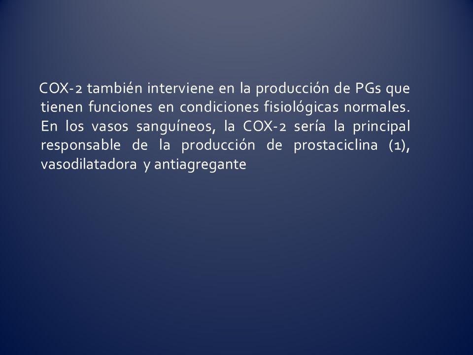 COX-2 también interviene en la producción de PGs que tienen funciones en condiciones fisiológicas normales. En los vasos sanguíneos, la COX-2 sería la