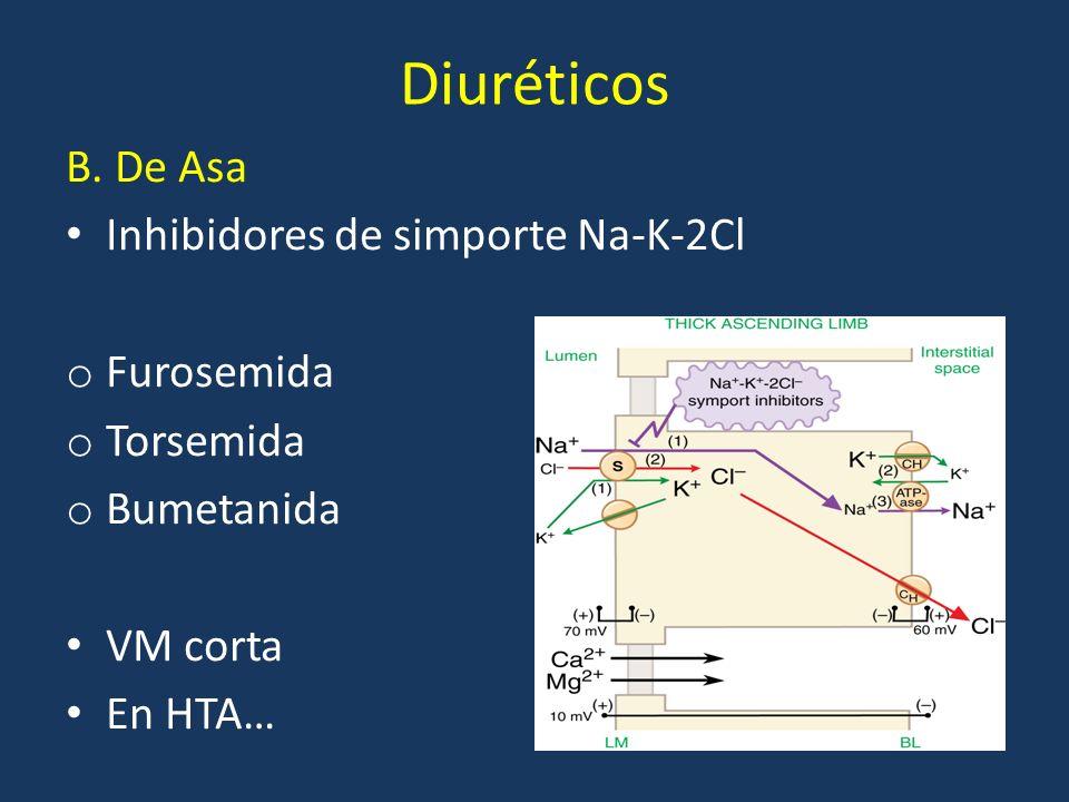 Diuréticos B. De Asa Inhibidores de simporte Na-K-2Cl o Furosemida o Torsemida o Bumetanida VM corta En HTA…