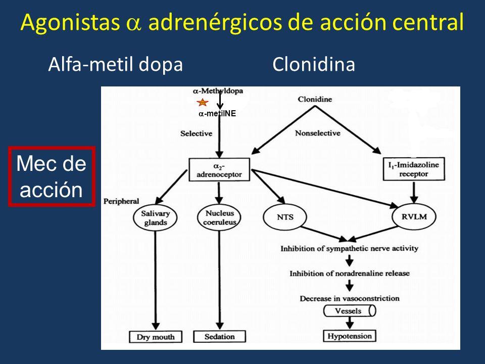 Agonistas adrenérgicos de acción central Alfa-metil dopaClonidina Mec de acción -metilNE