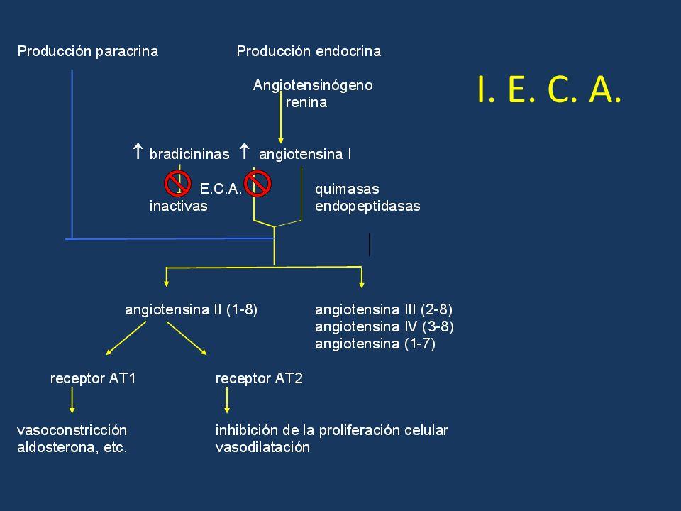 I. E. C. A.