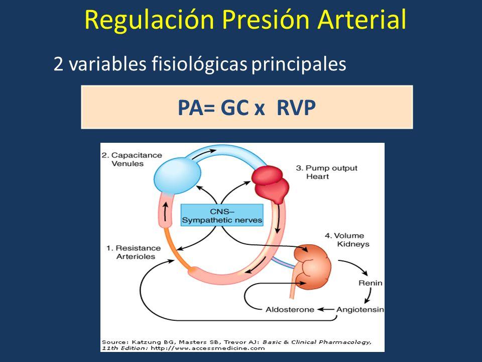 Regulación Presión Arterial 2 variables fisiológicas principales PA= GC x RVP
