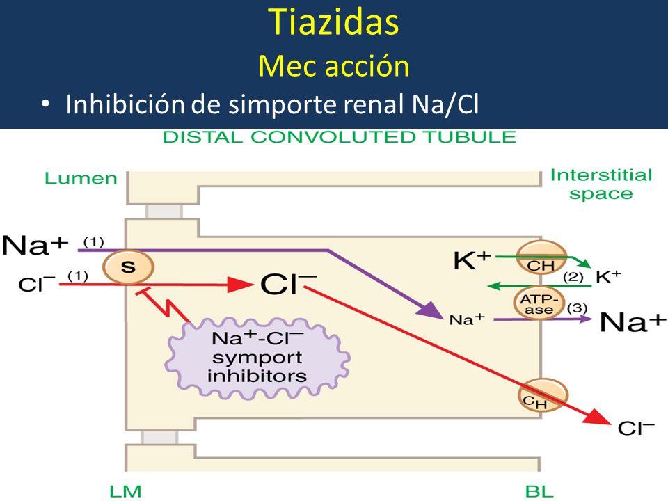 Bloqueadores de canales de calcio 1.Características farmacológicas: Inicio rápido Acción corta vs acción larga Amlodipina largo efecto Selectividad felodipina 2.